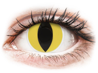 alensa.ua - Контактні лінзи - ColourVUE Crazy Lens - Cat Eye - недіоптричні