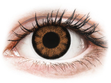 alensa.ua - Контактні лінзи - ColourVUE BigEyes Sexy Brown - недіоптричні